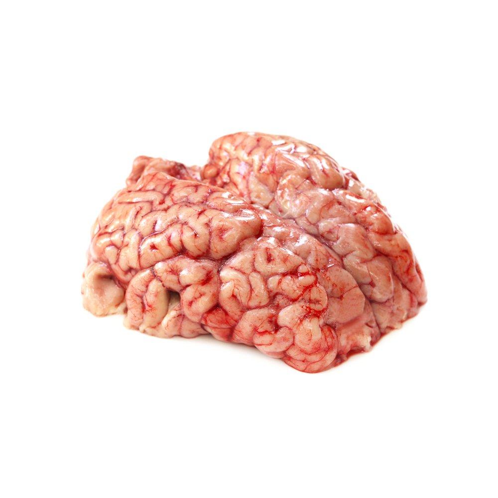 Beef Brain