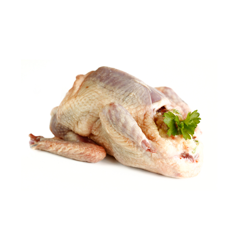 Pigeon (Kobutor) Meat